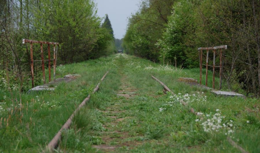 Linia kolejowa do Białowieży zostanie zrewitalizowana