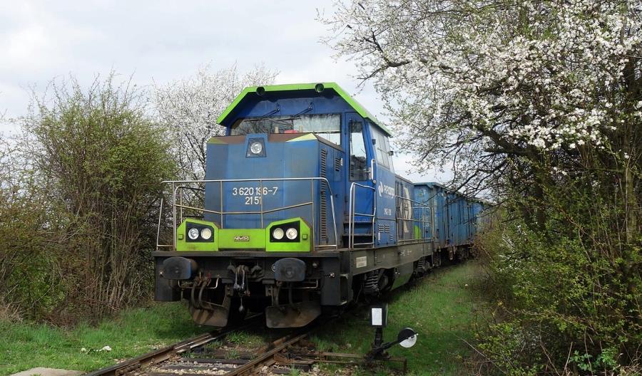 PKP Cargo zawarło duży kontrakt z Tauronem na przewóz węgla