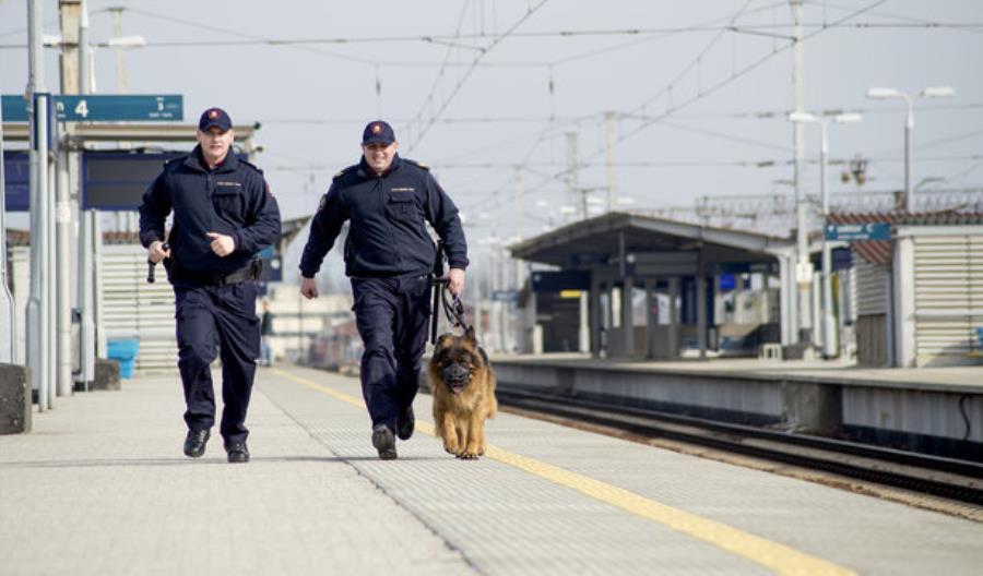 PLK chwali się spadkiem liczby przestępstw kolejowych