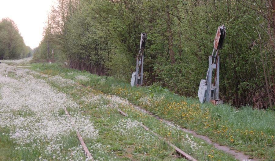 Podlaskie: Kolej do Białowieży bez rewitalizacji w najbliższym czasie