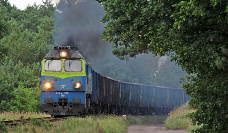 Rzońca: PKP Cargo brakuje wagonów, a w krzakach stoi ich 30 tysięcy