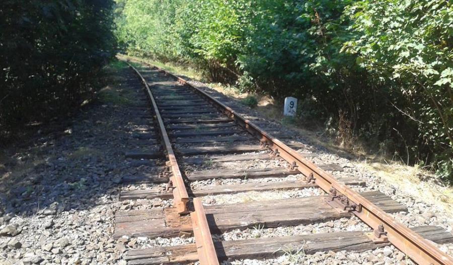 Linia do Lwówka Śląskiego jest już nieprzejezdna. Przez kradzieże