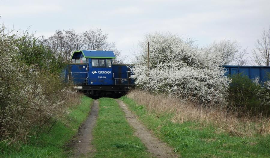 PKP Cargo z długoletnimi umowami na przewóz węgla dla Grupy PGE