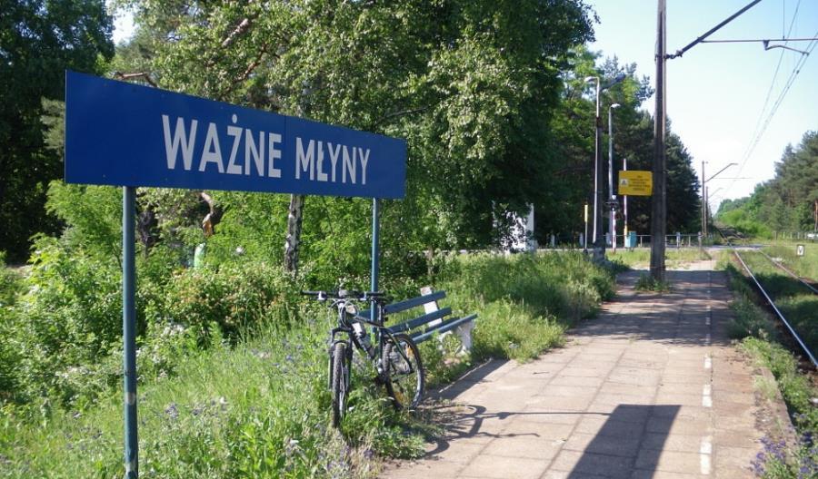 """Przewozy na """"Węglówce"""" i linii 146 będą dopiero rozważane"""