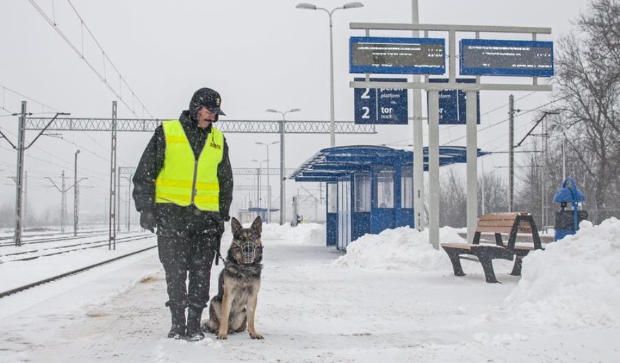 Więcej patroli SOK podczas ferii zimowych