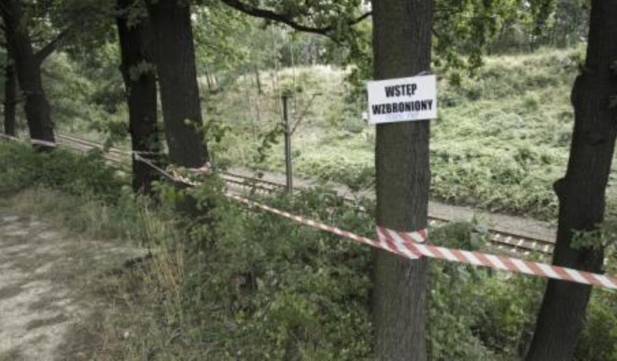 65. kilometr trasy Wrocław – Wałbrzych. Ciężki sprzęt na tropie złotego pociągu
