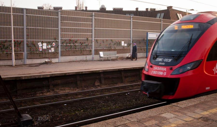 PLK: Wycinka drzew z peronu w Piastowie dla bezpieczeństwa pasażerów