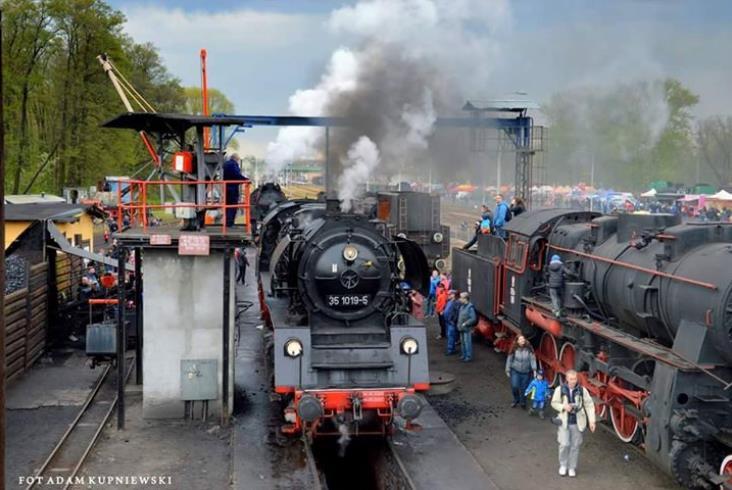 Zdjęcia z XXIV Parady Parowozów w Wolsztynie