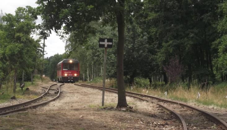 Śmigielska Kolej Wąskotorowa: Ruch turystyczny rośnie, ale…
