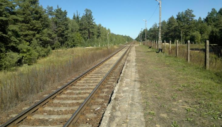 Torpol zrealizuje cały objazd kolejowy na Podlasiu. Kontrakty na 400 mln zł