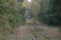 Zespół parlamentarny przyspieszy budowę kolejowego przejścia granicznego pod Włodawą?