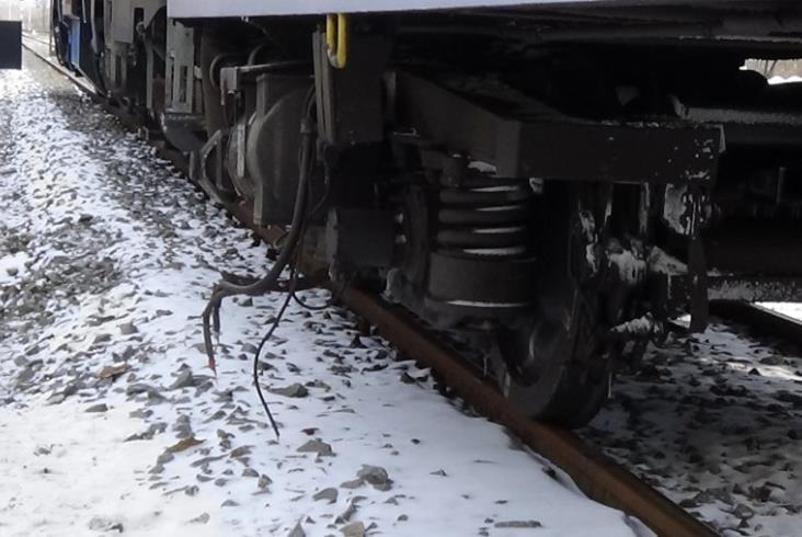 Groźne zdarzenie w Wilkołazie - pociąg uderzył w ścięte drzewo