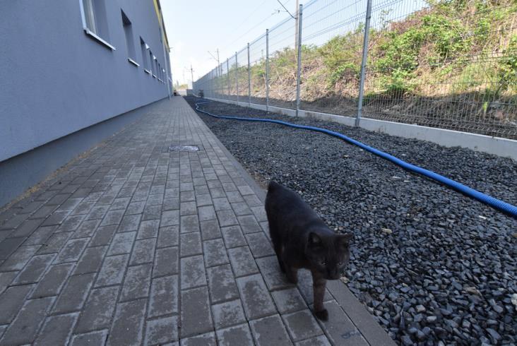 KD kończą odbiory nowej hali obsługowej [zdjęcia]