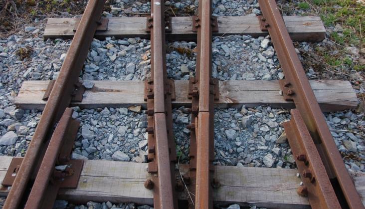 Śląskie: Pociąg wąskotorowy dotarł do stacji Stodoły w Rybniku