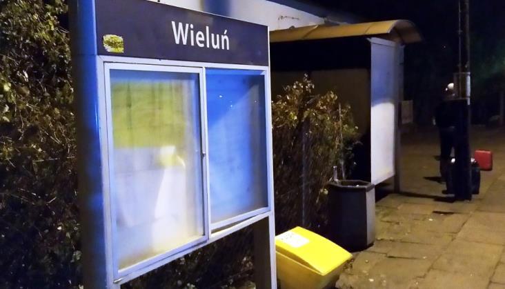 Ziemia Wieluńska: Znaczenie kolei nadal marginalne