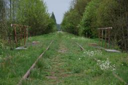 Podlaskie: Brak decyzji dotyczącej finansowania rewitalizacji linii do Białowieży
