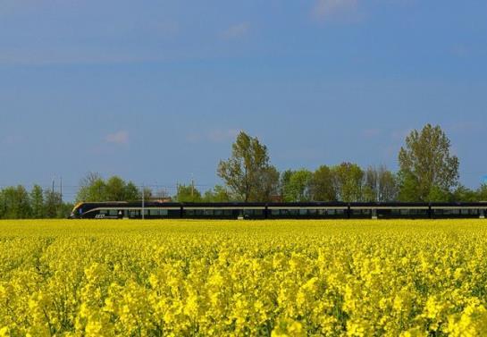 Leo Express złożył wniosek o trasę Pragę - Wrocław
