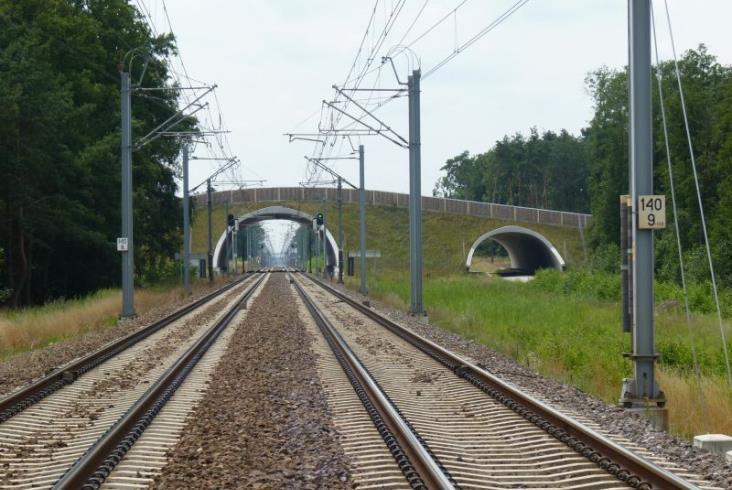Linia Poznań – Szczecin: Ponad 90 obiektów zostanie przystosowanych do potrzeb zwierząt