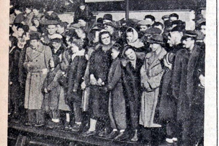 Historia linii nr 7. Jak walczono o elektryfikację i drugi tor między Otwockiem a Pilawą