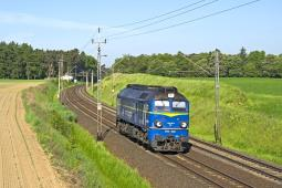 PKP Cargo: Przychody w dół, zysk za 2019 r. na poziomie 36 mln zł