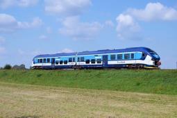 Oficjalnie: Pesa i Newag złożyły oferty na 160 pociągów spalinowych dla Ceskich drah!