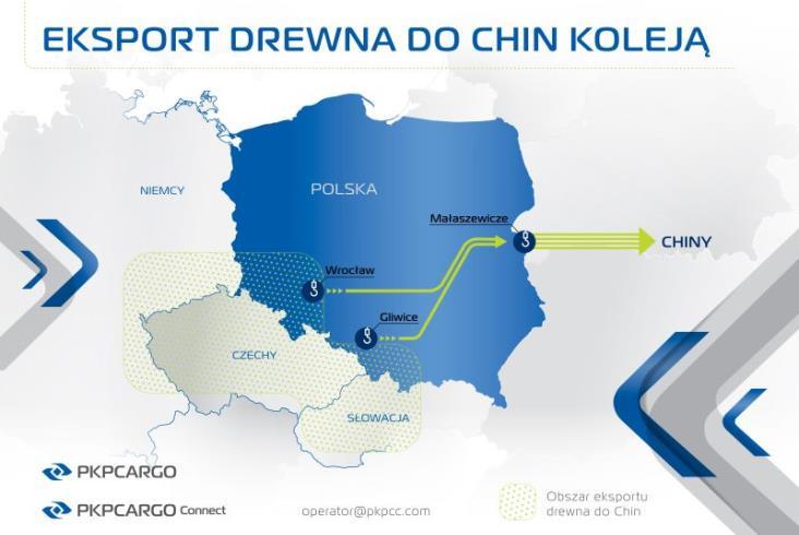 PKP Cargo Connect wysyła do Chin tysiące kontenerów z drewnem