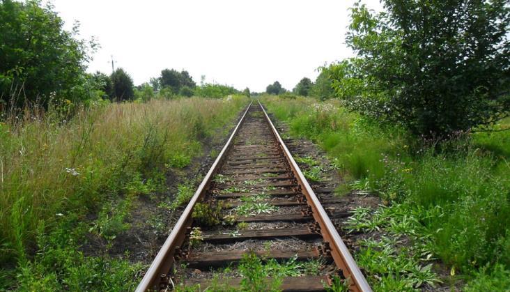 """Linia 176 Racibórz – Olza będzie nieprzejezdna. """"Rozbiórka toru jest tymczasowa"""""""