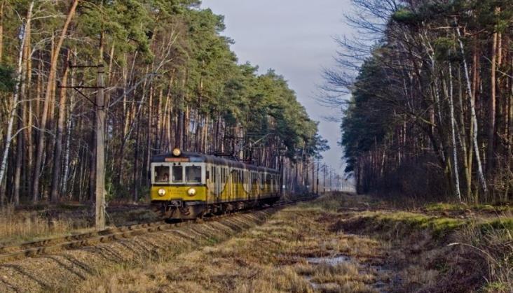 Koleje Dolnośląskie w Koleo