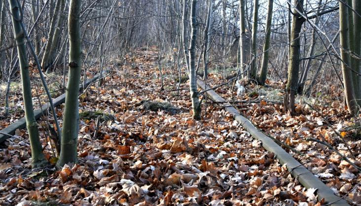 Dolny Śląsk zleca studia dla odbudowy linii do Świeradowa, Karpacza i Kowar [oferty]