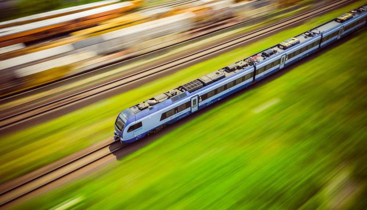 W jaki sposób pasażerowie PKP Intercity posadzą drzewa?