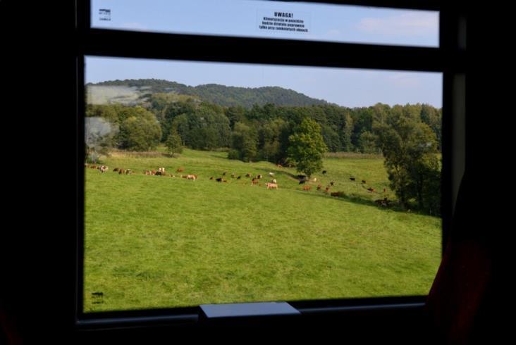 Czy pociągiem można podróżować tylko dla krajobrazów?