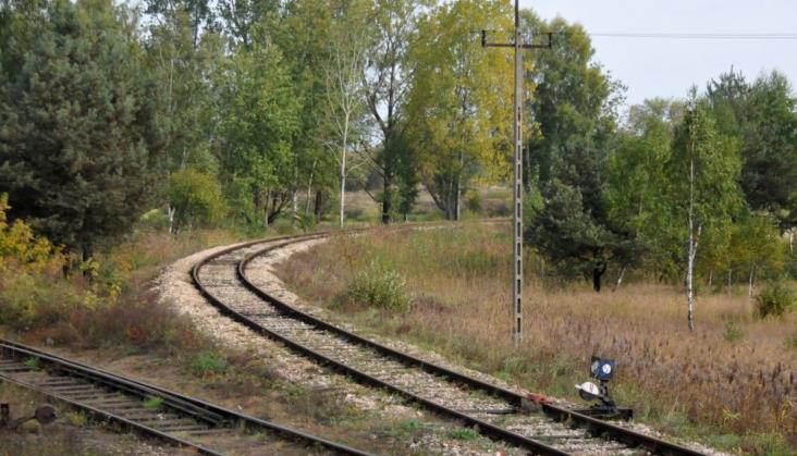 PLK: Nie ma listy linii kolejowych do likwidacji