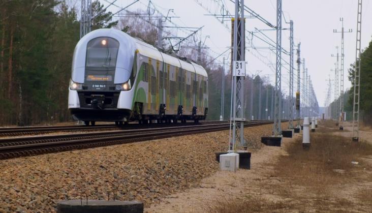 Jak chronić zwierzęta przed pociągami?