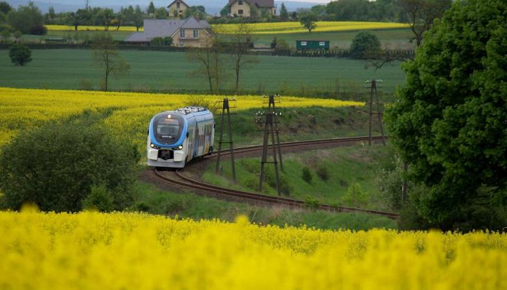 Malinowski: Rekordowe przewozy to wynik lepszej oferty dla pasażerów