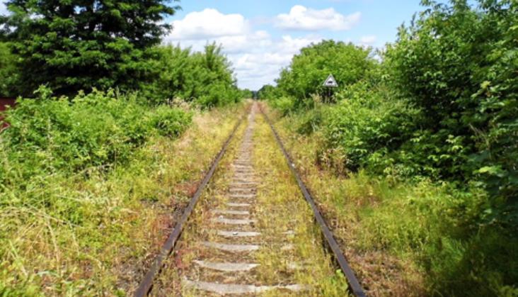 Burmistrz Dąbrowy Tarnowskiej pyta mieszkańców o likwidację linii do Szczucina