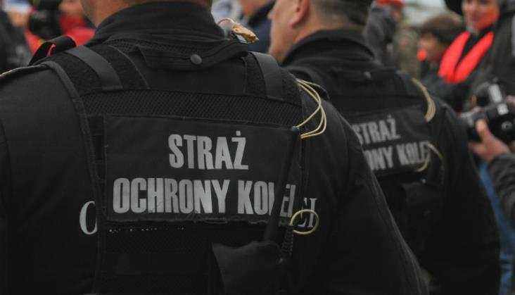 Łódzkie: SOK – spadła liczba zdarzeń, ale i wykrywalność