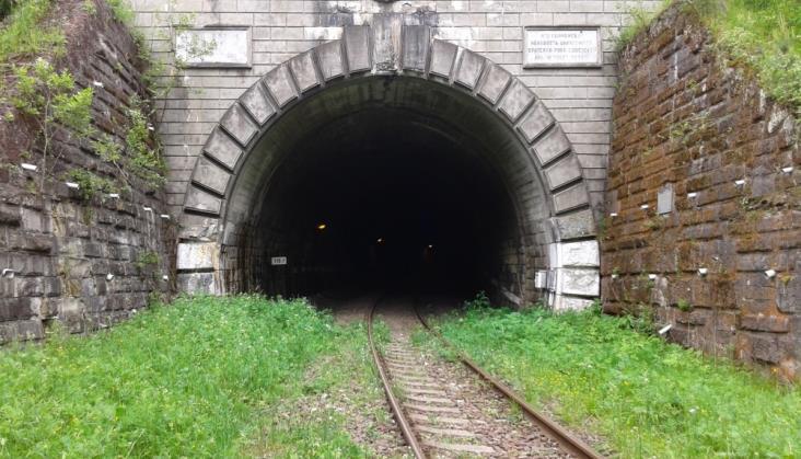 Bursztynowy Korytarz nie przez tunel w Łupkowie